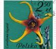 Orbea lugardii-Poland-1981