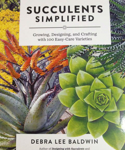 Succulents Simplified - Growing, Designing, and Crafting with 100 Easy-Care Varieties