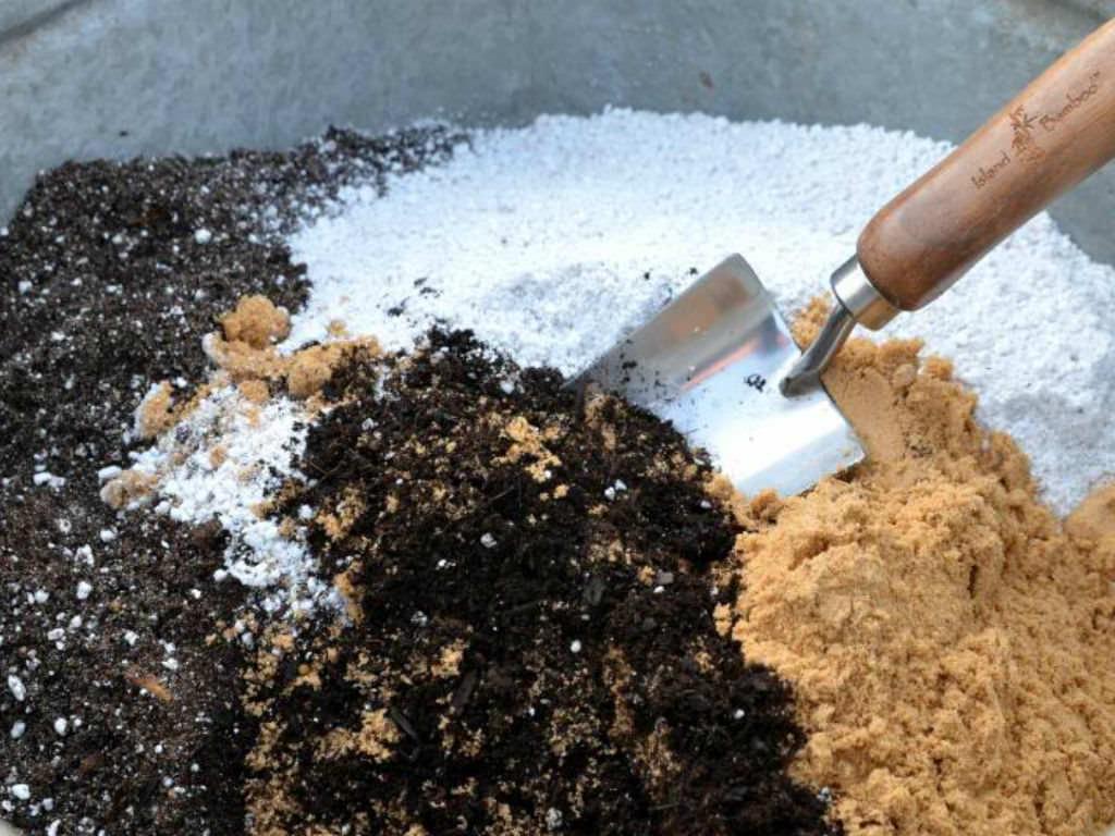 Homemade Potting Soil For Cacti