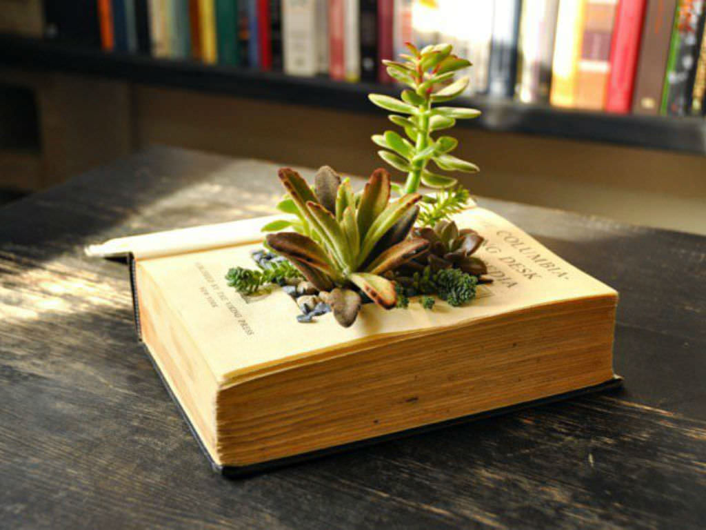 How to make your own book planters for succulents world Planters for succulents