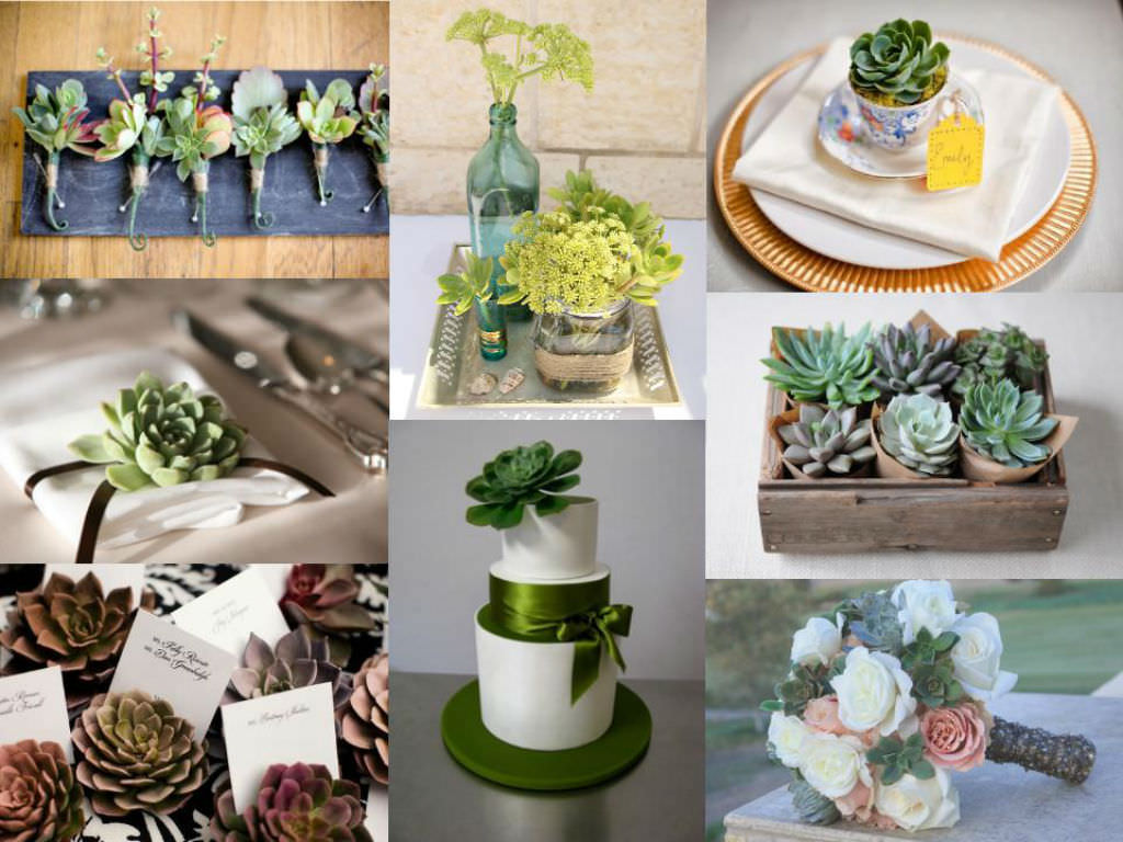 10 Creative Ways To Use Succulents In Your Wedding World Of Succulents