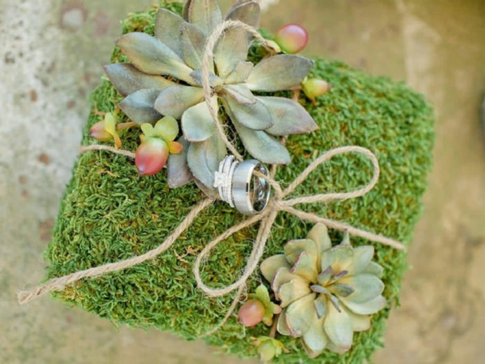 Creative Ways to Use Succulents in Your Wedding