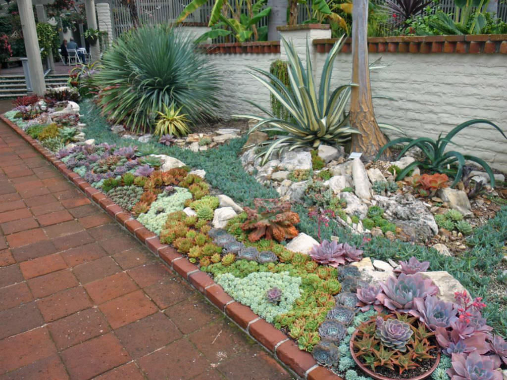 How to plant an outdoor succulent garden world of succulents for Plants for outdoor garden