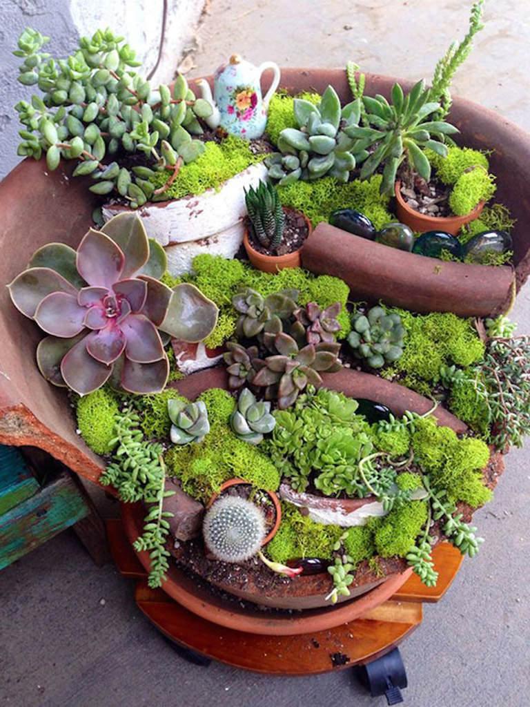 Fairy Gardens With Succulents From Broken Pots