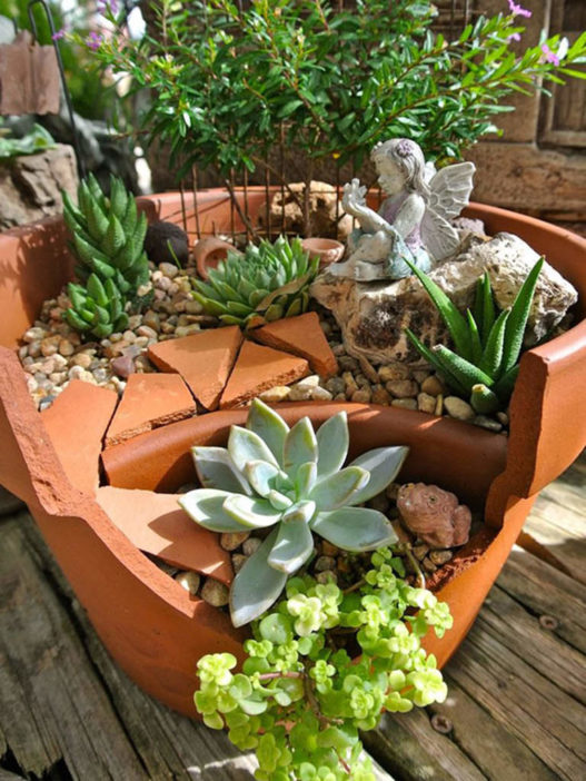 Fairy Gardens with Succulents