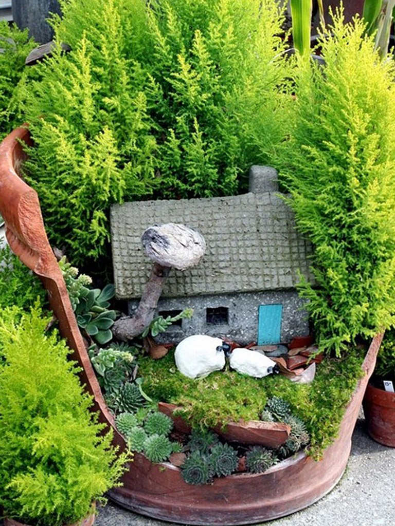 Gnome In Garden: Fairy Gardens With Succulents From Broken Pots