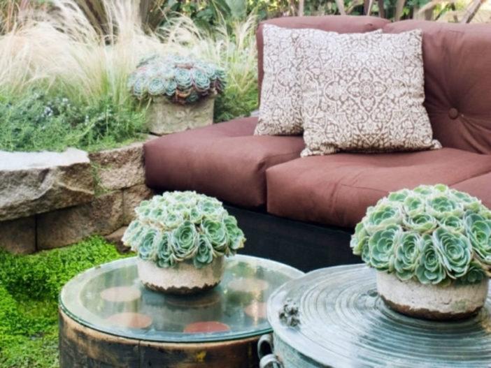 Easy-Care Mini Succulent Garden Ideas